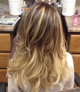 HSC Hair shot